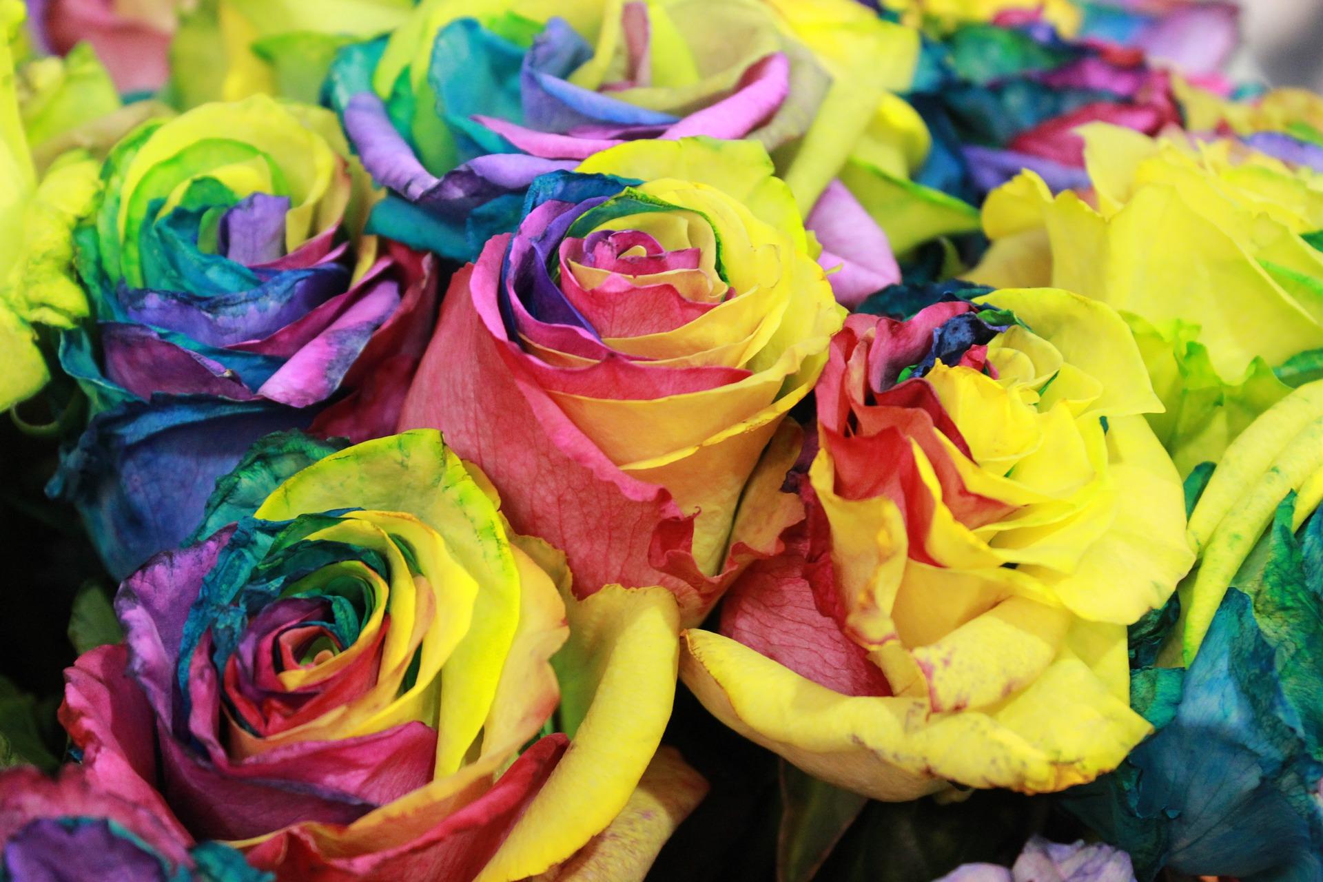 Sztuczne kwiaty w domu – czy to dobry pomysł?